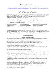 hr resume exles 2 hr business partner resume sle resume for study