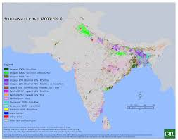 Asia Geography Map by Irri Mapping