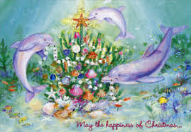 tropical christmas cards three dolphins farm studios box of 18 tropical christmas cards