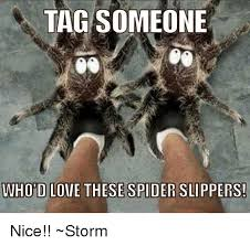Spider Meme Misunderstood Spider Meme - search misunderstood spider memes on me me