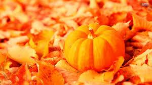 halloween pumpkin desktop wallpaper high definition collection autumn pumpkin wallpaper 39 full hd