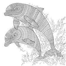 the aquarium colouring book dolphins richard merritt dolphin