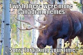 Sorry Memes - 37 of the best memes about canada on the internet