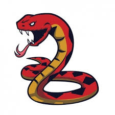 snake vectors photos psd files free download