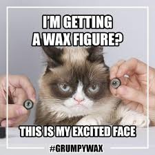 Create A Grumpy Cat Meme - grumpy wax grumpy cat pinterest grumpy cat and cat