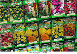 flower seed packets seed packets for sale flower seed packets for sale duck walk