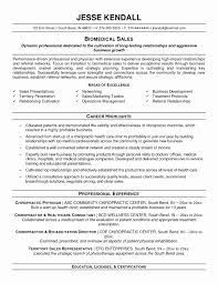 sales resume format professional sales resume format awesome resume exles appealing