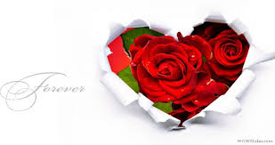 Flower Stores In Fort Worth Tx - andrew flower delivery tulsa ok same day flower delivery