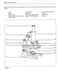 parts of a microscope worksheet cheap part of a microscopes