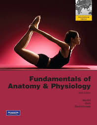 Human Anatomy And Physiology Study Guide Pdf Just Another Anatomy And Physiology Site Anatomy And Physiology