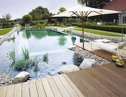 Swimming Pool Ideas Best 25 Natural Swimming Pools Ideas On Pinterest Natural Pools