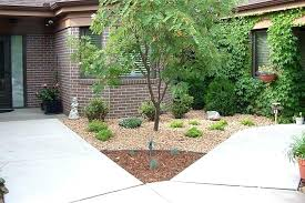 Low Maintenance Front Garden Ideas Low Maintenance Front Yard Awesome Ideas For Low Maintenance