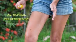 how to make an all natural organic insect repellent diy home