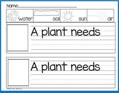 parts of plants worksheets click here parts of a plant pdf to
