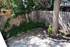 Enclosed Backyard 16 Ashdale Ave Leslieville