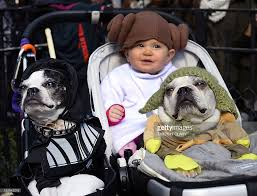 star wars halloween costumes for babies 23rd annual tompkins square halloween dog parade photos and images