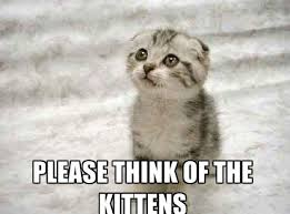 Cute Kitty Meme - funny cute angry cat memes collection for friends family