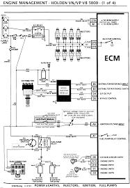 holden v8 distributor wiring diagram holden wiring diagrams