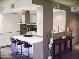 cuisine design lyon cave a vin cuisine beau appartement lyon 6 agencement cuisine