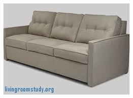 slide out sofa bed livingroomstudy org living room design magnificent everyday
