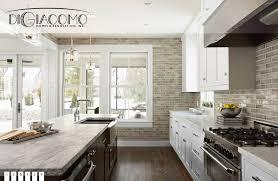 Home Renovation Design Free Design Build Minneapolis Mn New Home Builder Digiacomo