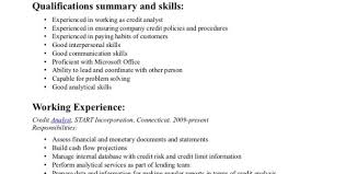 Credit Analyst Resume Objective Computer Systems Analyst Resume Market Analyst Resume Sample