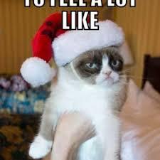 Joy Meme - grumpy cat meme is not down for the holiday spirit of joy