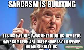 Sarcastic Funny Memes - sarcasm is bullying its just a joke i was only kidding hey lets