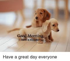 Have A Nice Day Meme - good morning have a nice day have a great day everyone meme on sizzle