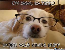 Dog With Glasses Meme - and the boss has me working like a dog by marco leyva 79 meme center