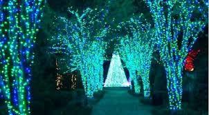 Botanical Garden Atlanta Lights Garden Lights Holiday Nights