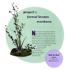 buy ikebana create beautiful flower arrangements with this