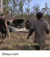 Straya Memes - 25 best memes about straya cunt straya cunt memes