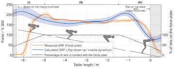 sensors free full text estimation of joint forces and moments