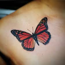 best 25 realistic butterfly tattoo ideas on pinterest butterfly