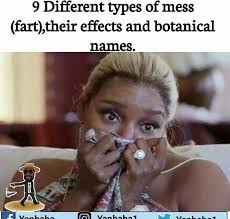 Different Kinds Of Memes - different kinds of farts their effects and botanical names memes