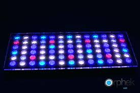 national geographic aquarium light led aquarium fixture led aquarium lights diy wecompany me