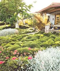 Front Yard Landscaping Ideas No Grass - small front garden ideas no grass the garden inspirations