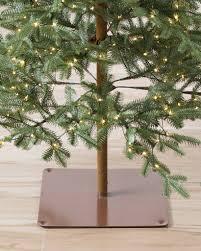 alpine balsam fir balsam hill