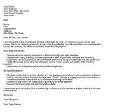 information technology resume layouts exles of hyperbole sle cover letters resume badak