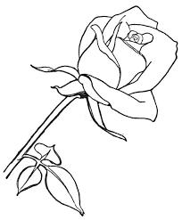 coloriage fleurs à colorier allofamille