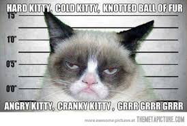 Soft Kitty Meme - grumpy cat sings the soft kitty song the meta picture