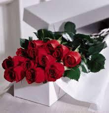boxed roses kremp