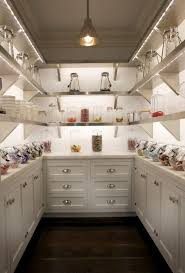 walk in kitchen pantry ideas planning a walk in pantry renovator mate