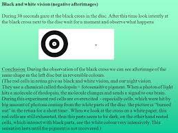 Blind Spot In Left Eye Human Senses Seeing Optic Disc Blind Spot Evidence A Hold