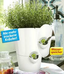 Landhausk Hen G Stig Online Kaufen Emsa Emsa Kräutertopf Fresh Herbs Weiß 1 Topf Günstig Online