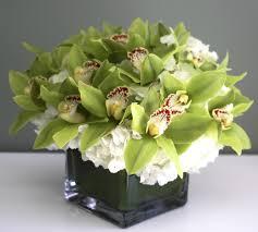 orchid delivery cymbidium orchid flower delivery in atlanta buckhead florist inc
