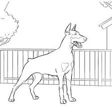 coloring page of a big dog 260 best just dogs images on pinterest colouring pages coloring
