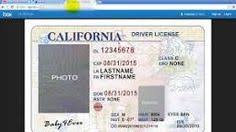 template virginia drivers license editable photoshop file psd