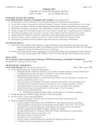 Executive Summary Example For Resume by Resume Example Of Resume Summary
